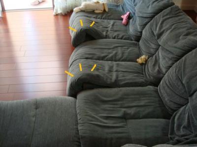 ソファーのめくれ
