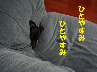 ひとやすみ