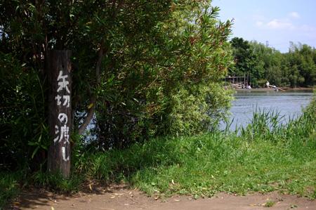 20080601_31.jpg