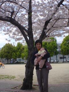 去年の桜の下で