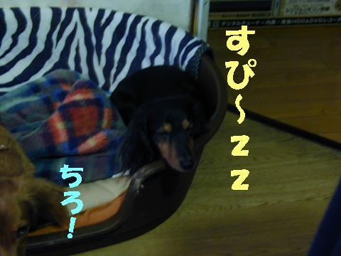 wans34