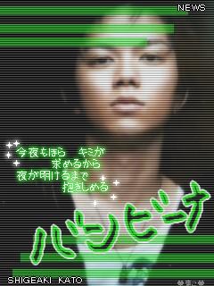 20080318_7053.jpg