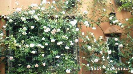 2008壁庭2