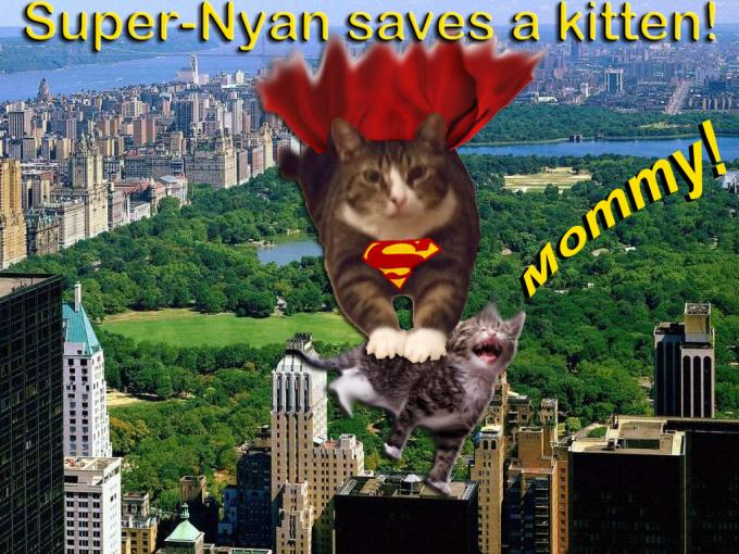 super Nyan saves a cat_convert_20080602225322