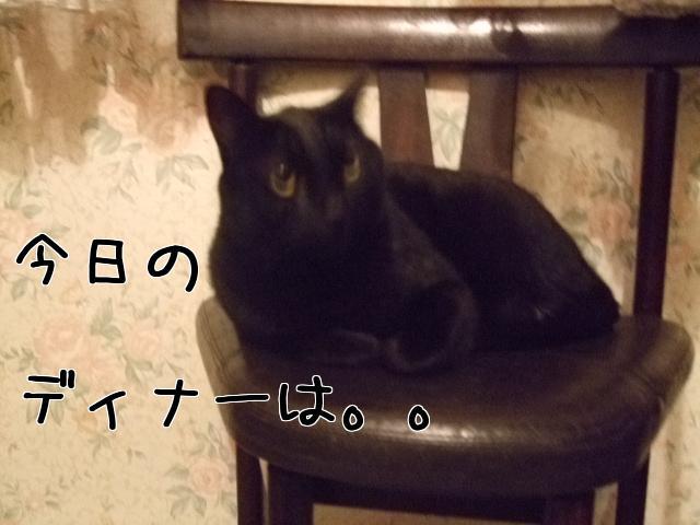 Uhu0o_8T.jpg
