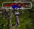 Gunz20051127_01