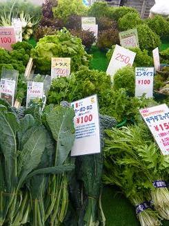 農協の野菜③