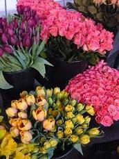綺麗なお花~