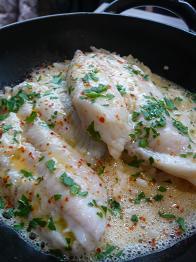 ココット魚