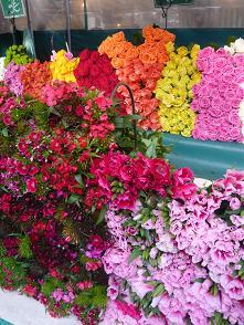 バス・お花