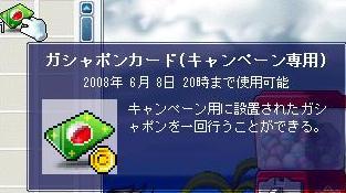 Maple000.jpg