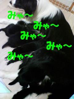 080530_2015~01