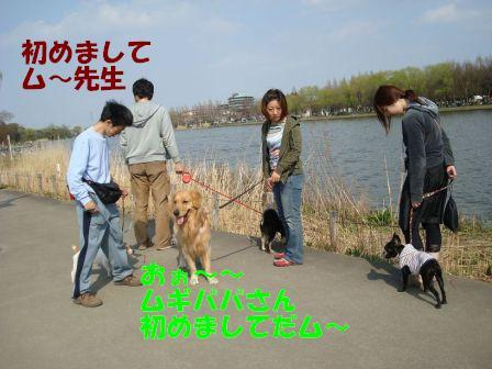 DSC01321.jpg