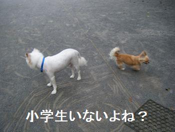 1_20080708200139.jpg
