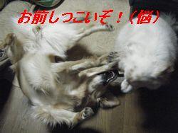 バトル2(い)