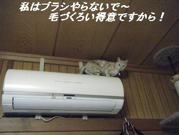 エアコン(え)