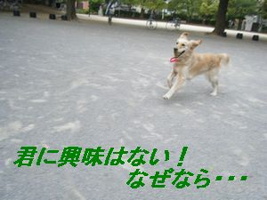 andy(く)