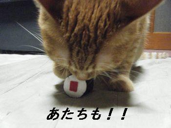 6_20080628154232.jpg