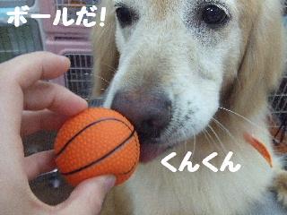 2008_0707ふみえ0052