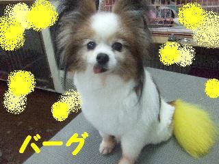 2008_05250073.jpg