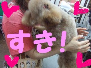 2008_05250077.jpg