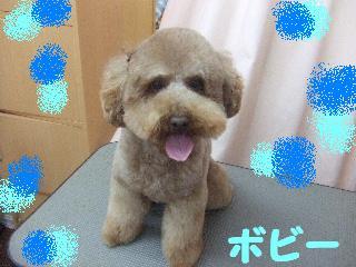 2008_05250079.jpg