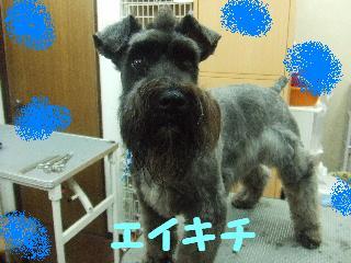 2008_05250098.jpg
