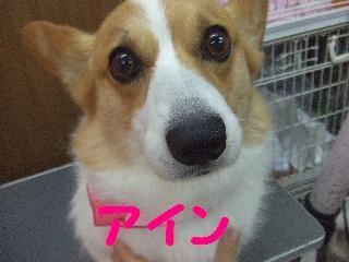 2008_07140043.jpg