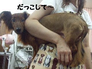 2008_08090032.jpg