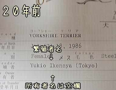 20060705