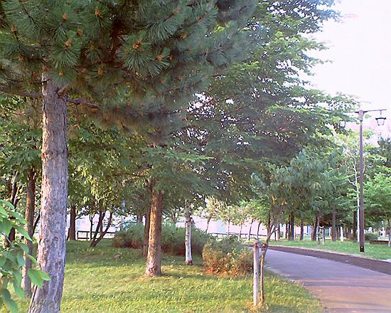 20080702(2).jpg