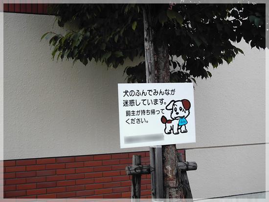 20080710(1).jpg