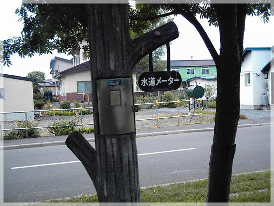 20080710(5).jpg