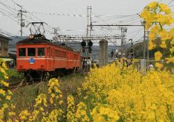 一畑口(2008.4.13)