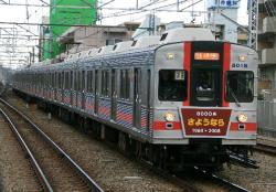 菊名(2008.1.13)