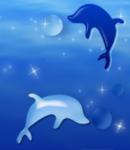 do_dolphin