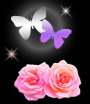 do_rose_butterfly