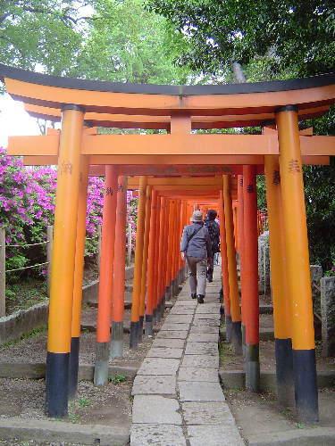2008・05・02根津神社02