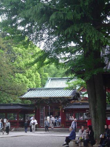 2008・05・02根津神社03