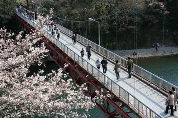 桜淵公園 橋