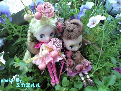 妖精さんでっきー、チョコ・桜CA390153