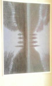 20080602065103