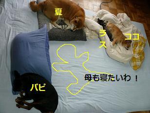 布団で寝る2