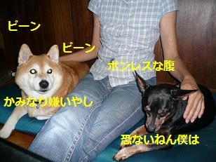 かみなり3