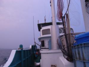 6月28日 魚釣り 002