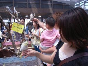 神戸花鳥園 024