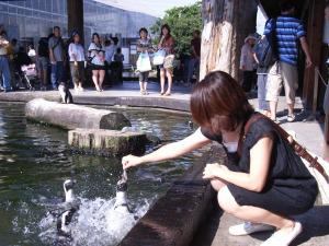 神戸花鳥園 042