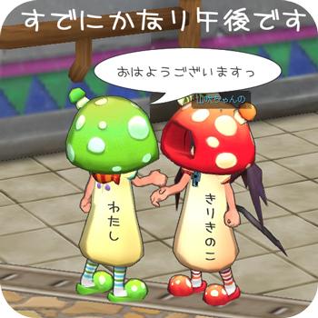 ドレスコードはKINOKO!