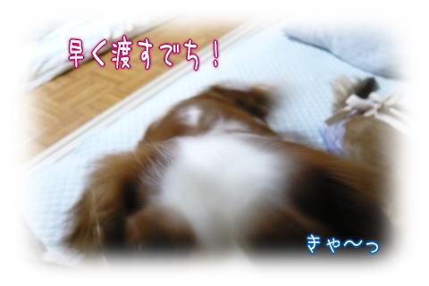 nene_5_22_4.jpg
