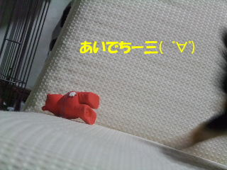 BLOG2008_05010041m